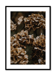 Minimalist design poster by Opposite Wall with Hydrangeas photography