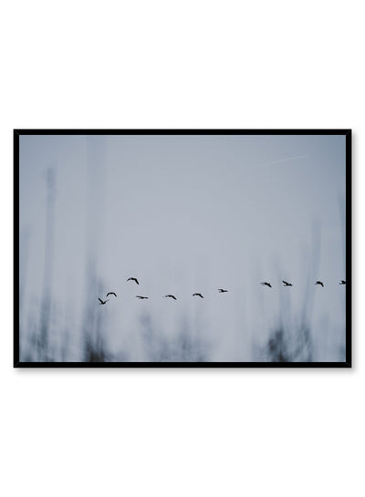 Minimalist design poster by Opposite Wall with Flying Bird Formation photography