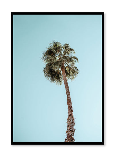 Minimalist design poster by Opposite Wall with palm tree photography