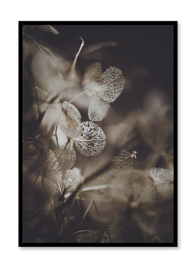 Minimalist design poster by Opposite Wall with Hydrangea Plant photography
