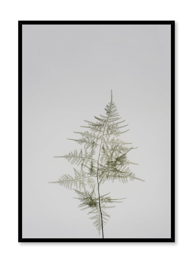 Minimalist design poster by Opposite Wall with Young Fern photography