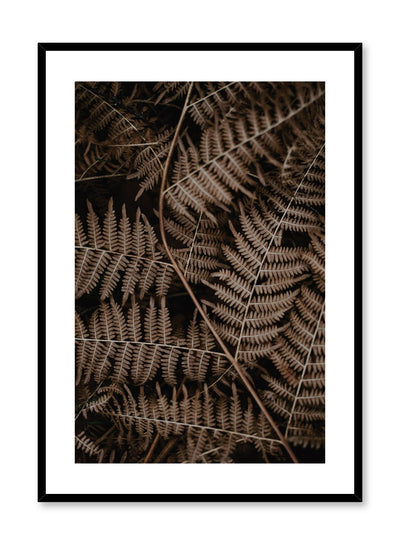 Minimalist design poster by Opposite Wall with Fern plant photography