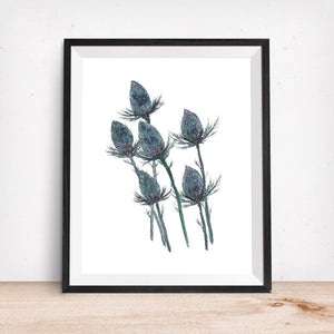Blue Supernova Thistle- Art Print