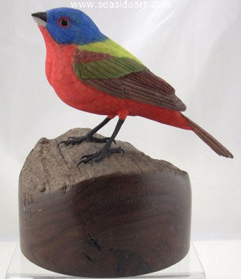 Painted Bunting by Jim Carpenter - Seaside Art Gallery