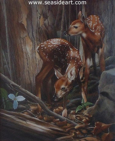 Twins – Fawns by Karen Latham - Seaside Art Gallery