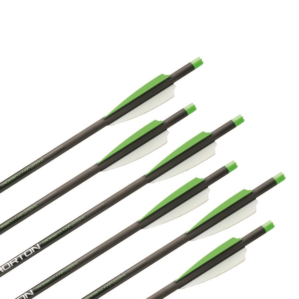 "Horton HEA-722.6 20"" Carbon Arrows 6 Pack"