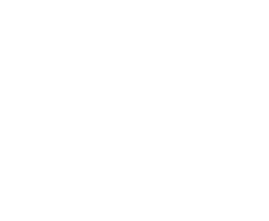 Gauge Performance