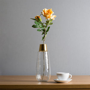 Casamotion Hand Blown Transparent Glass Vase