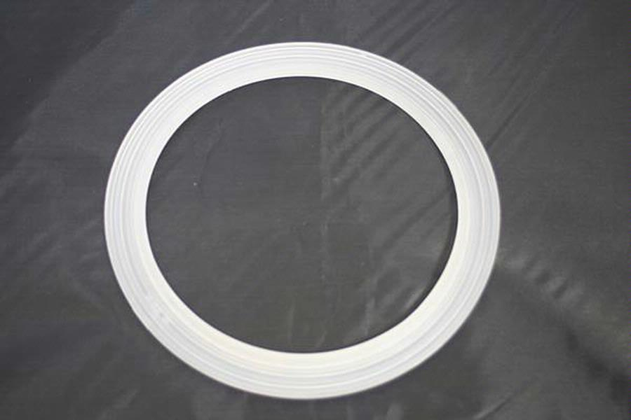 Sand Filter Gasket Bagged