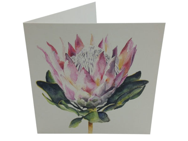 Greeting Card - Protea