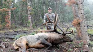 Utah Monster 420 3/4 P&Y Archery Elk: Alonzo Ashworth Bull