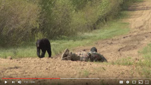 VIDEO: Close Bear Encounter - Alberta Hunt