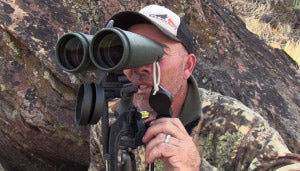 Glassing Techniques and Tips for Spotting Mule Deer