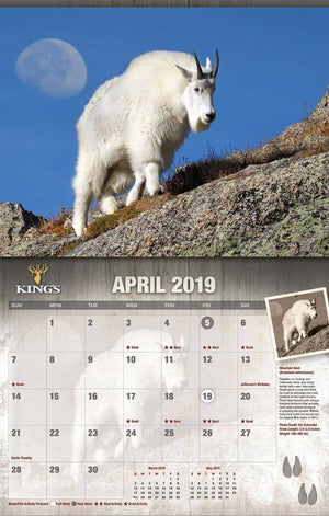 2019 King's Wildlife Calendar | King's Camo