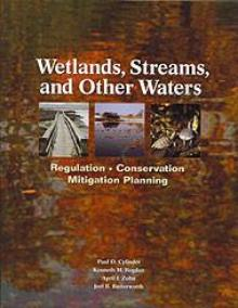 Wetlands, Streams, and Other Waters