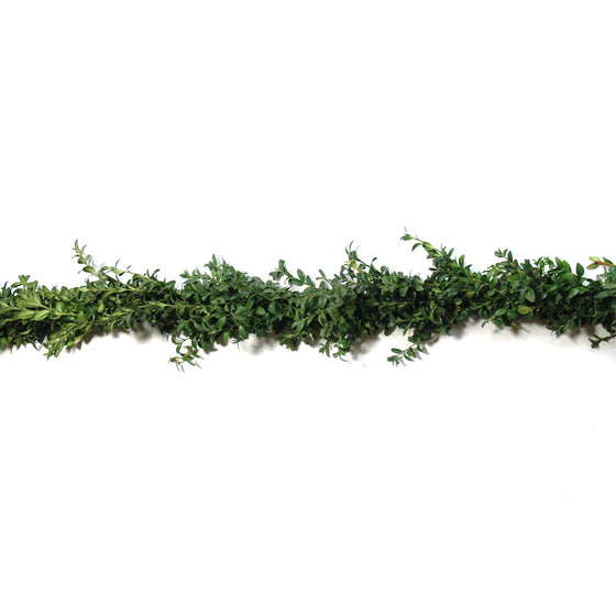 Deluxe Boxwood Garland
