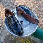 Alden x Brogue Chester Blucher