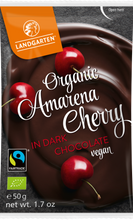 Amarena Cherry in Dark Chocolate