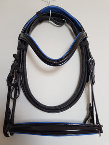 Drop Noseband Bridle - Black Patent Leather with Blue  Full, Cob, Pony