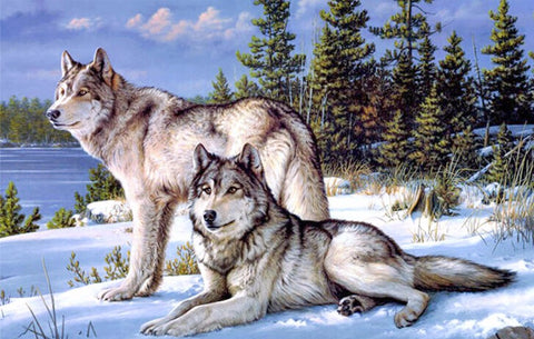 Wolf counted cross stitch kits paste painting the living room needlework kits Square Diamond Embroidery zx-Hot Sale Products free ship to worldwide