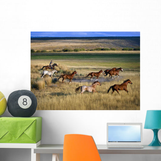 Cowboy Riding With Herd Of Horses Wall Mural