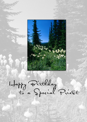 3656 Priest Birthday Landscape