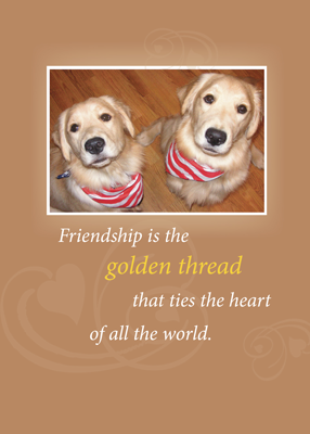 2740 Golden Friendship Birthday