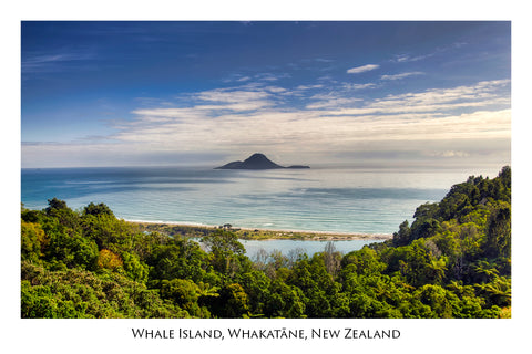 673 - Post Art Postcard - Whale Island, Whakatane