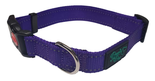 Reflective Nylon Buckle Dog Collar Purple- We Donate to Rescues For Each Collar Purchased