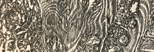 Creating a Durham Oak Wood print on BBC1 Countryfile