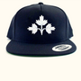 Dominion City Snapback Hats