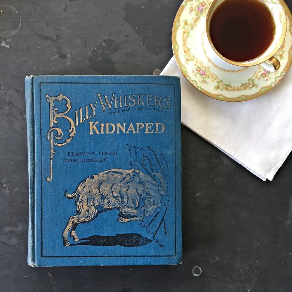 Antique Children's Book - Billy Whiskers Kidnapped by Frances Trego Montgomery - 1910