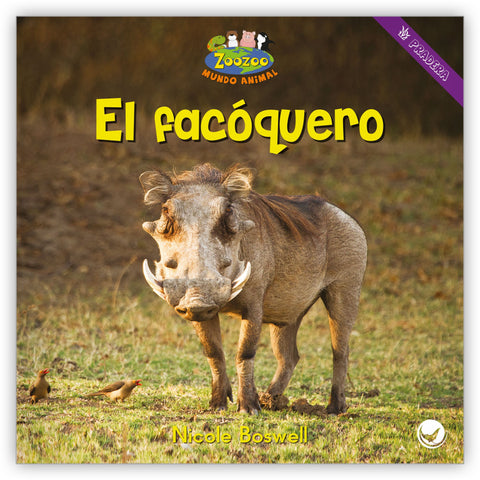 El facóquero from Zoozoo Mundo Animal