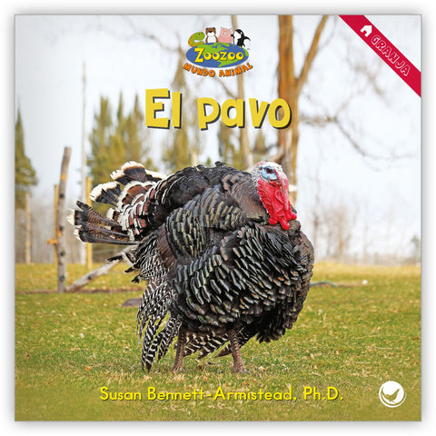 El pavo from Zoozoo Mundo Animal