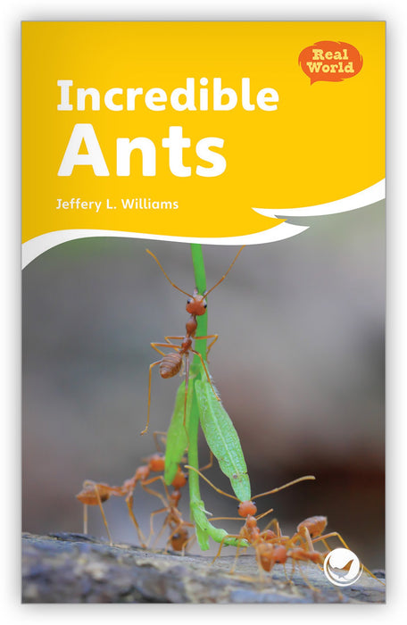 Incredible Ants Big Book from Fables & the Real World