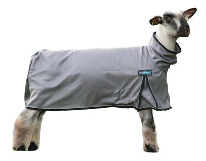 Image of ProCool Sheep Blankets