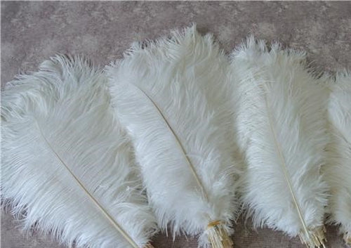 White Feathers  about 12 - 18 cm long
