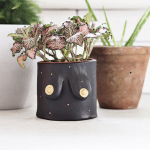 Plant Pot-black with golden and gold freckles.