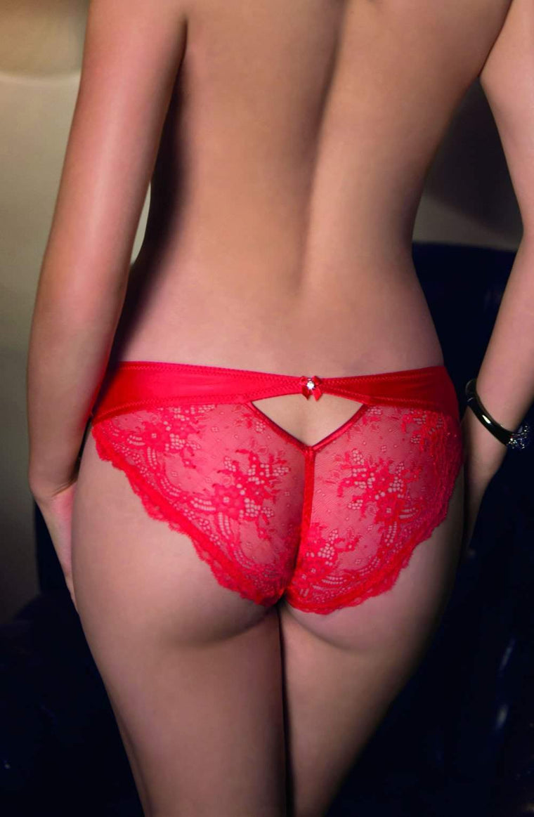 Ali Brief In Red by Roza - Roza - Katys Boutique Lingerie USA