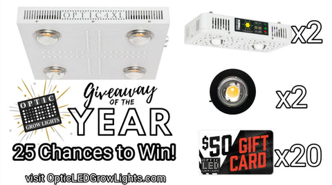 Giveaway of the Year from Optic LED (Ends 8/10/2019)