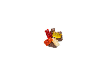 Chocolate Covered Gummy Bears (4oz.)
