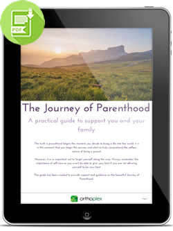 Free PDF Download The Journey of Parenthood