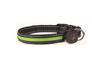 LED Dog Collar USB Rechargeable Adjustable Flashing Night Light