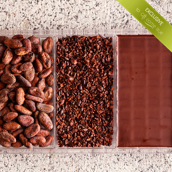 """From the cocoa bean to the chocolate block"" – a special chocolate tour"