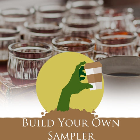 Build Your Own Sampler