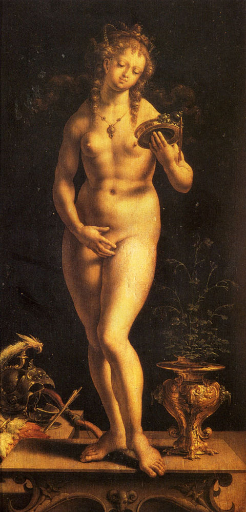 Venus and the Mirror