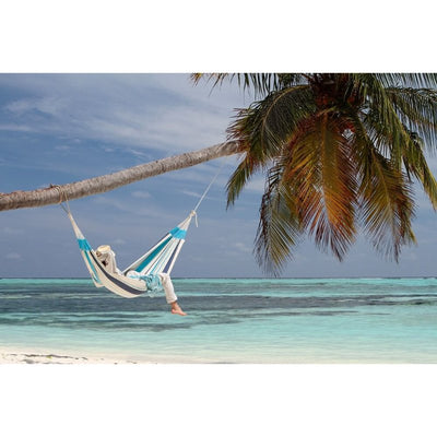 hammock hanging from coconut tree