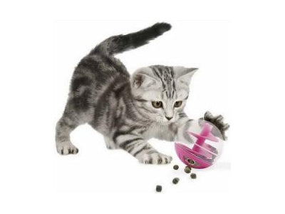 Playing with Food: Cat Kibble Balls