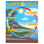 The Water Cycle Learning Charts