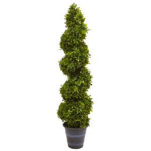 Boxwood Spiral Topiary with Planter (Indoor/Outdoor) - Phoenix Silk Flower Marketplace
